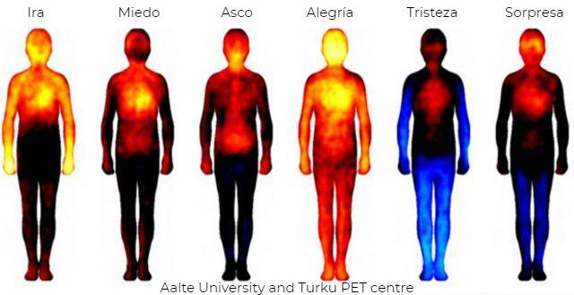 Mapa de las emociones de la Universidad de Aalte
